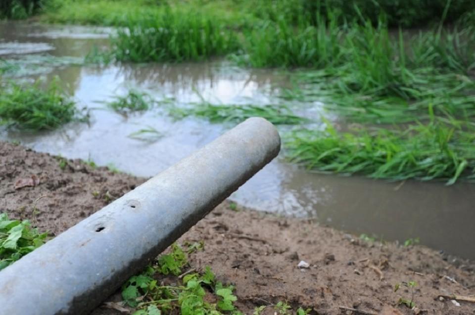 Более половины сбрасываем в реки стоков - это отходи с животноводческих ферм.