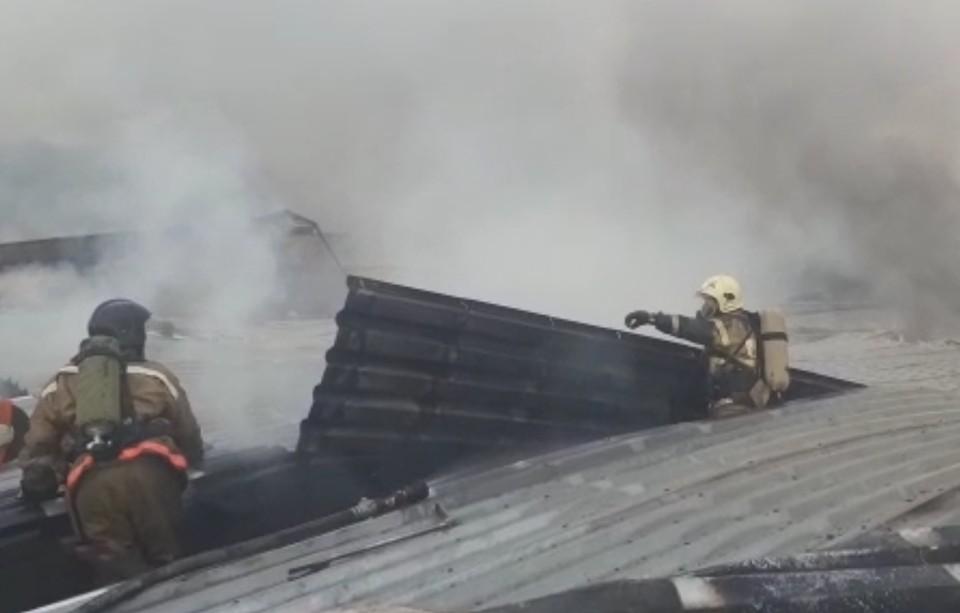 Фото: скриншот с видео / ГУ МЧС по Челябинской области