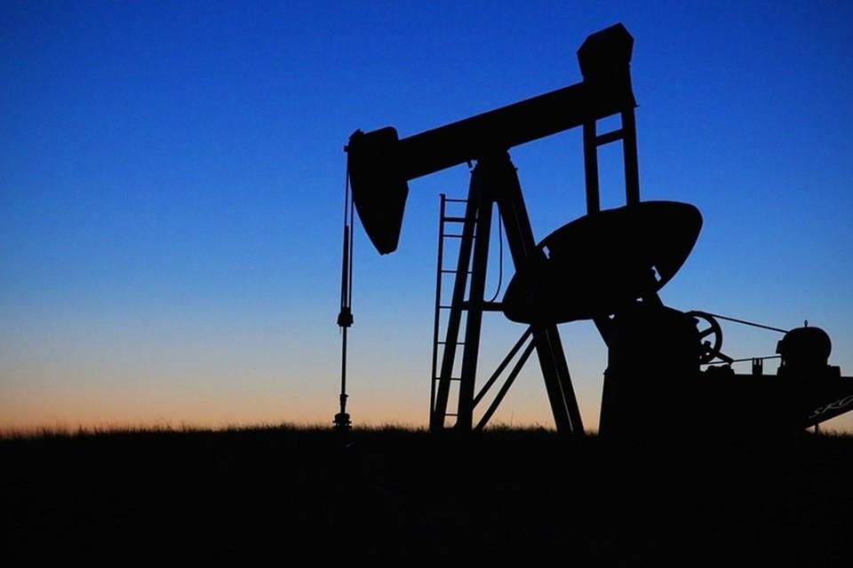 Казахстан будет поставлять нефть в Беларусь. Фото: pixabay