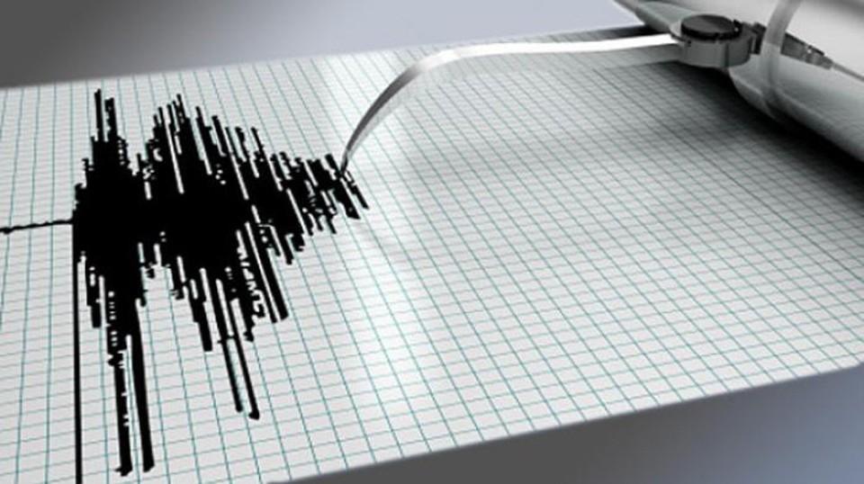 Сейсмологи прогнозируют новые землетрясения. Фото: соцсети