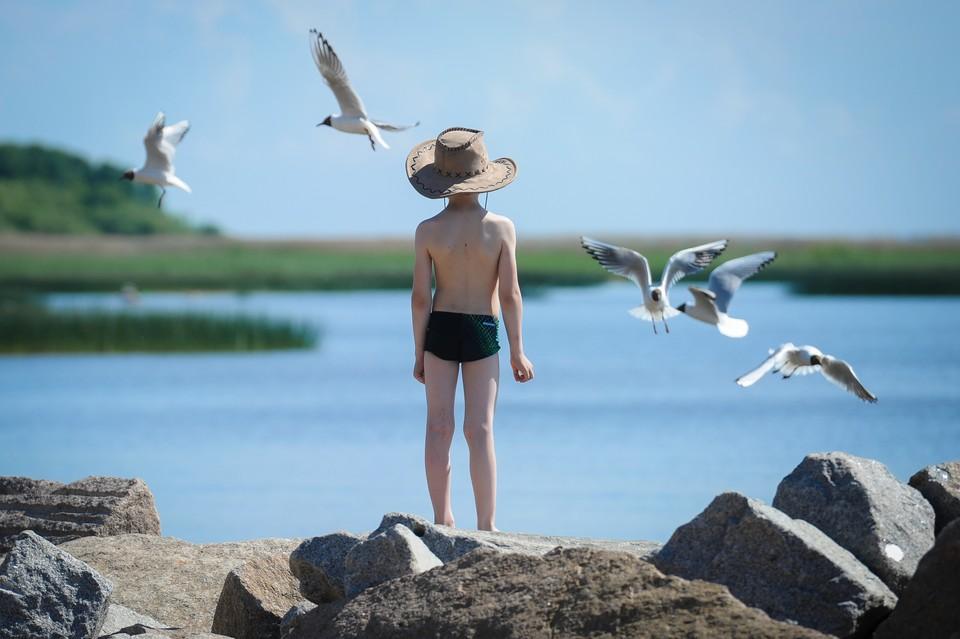 Температура поднимется выше 30 градусов в Петербурге 8 июля