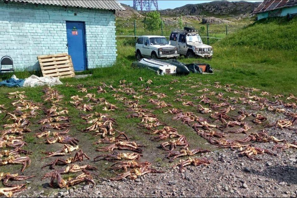 Автомобиль мужчины и морские деликатесы правоохранители изъяли. Фото: ПУ ЗАР
