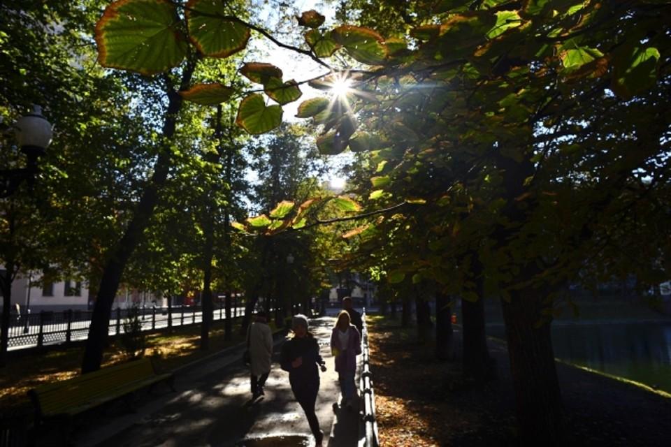 В Ростовской области на выходных будет очень жарко