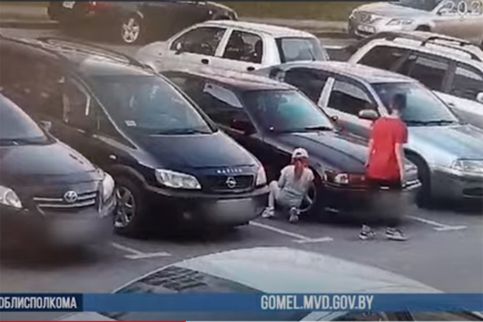 "Семилетняя девочка пошла ""на дело"" вместе с одиннадцатилетним братом. Фото: кадр из видео УВД."