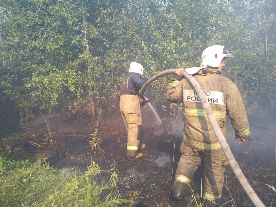 С рассветом тушение пожара возобновилось. Фото: ГУ МЧС по Самарской области
