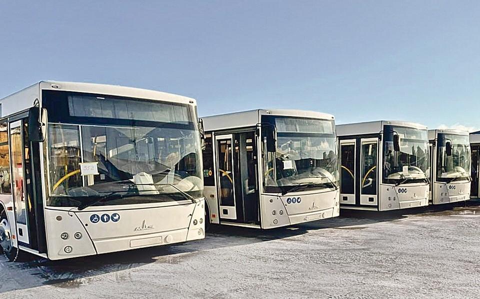 """В ближайшей перспективе """"Тульская ТК"""" планирует приобрести еще два больших новых автобуса"""