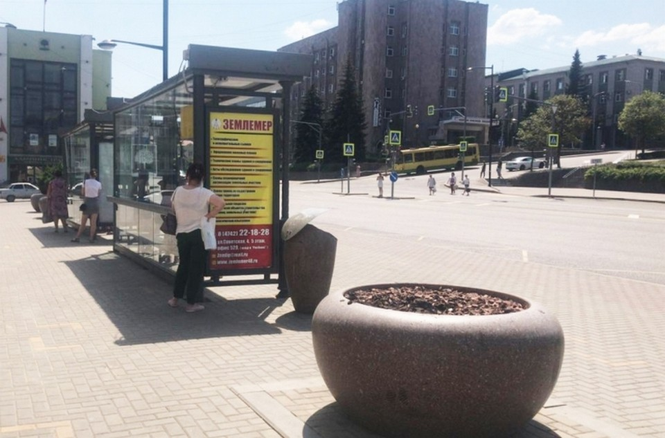 Вандалы украли дерево в центре Липецка