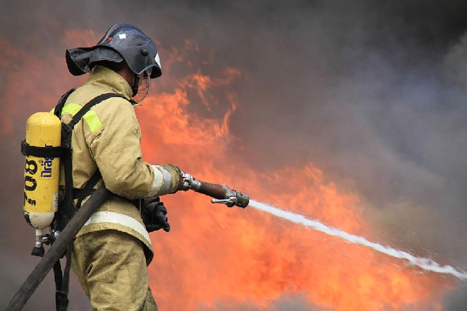 Во избежание пожаров жителей просят не разводить огонь в лесах и степях. Фото: МЧС ДНР