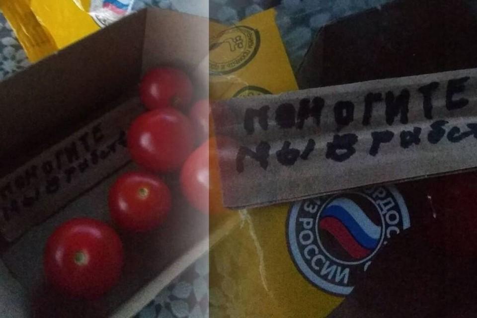 Сибирячка купила в супермаркете упаковку помидор черри и нашла внутри послание с просьбой о помощи. Фото: предоставлено героем публикации издания «Прецедент»