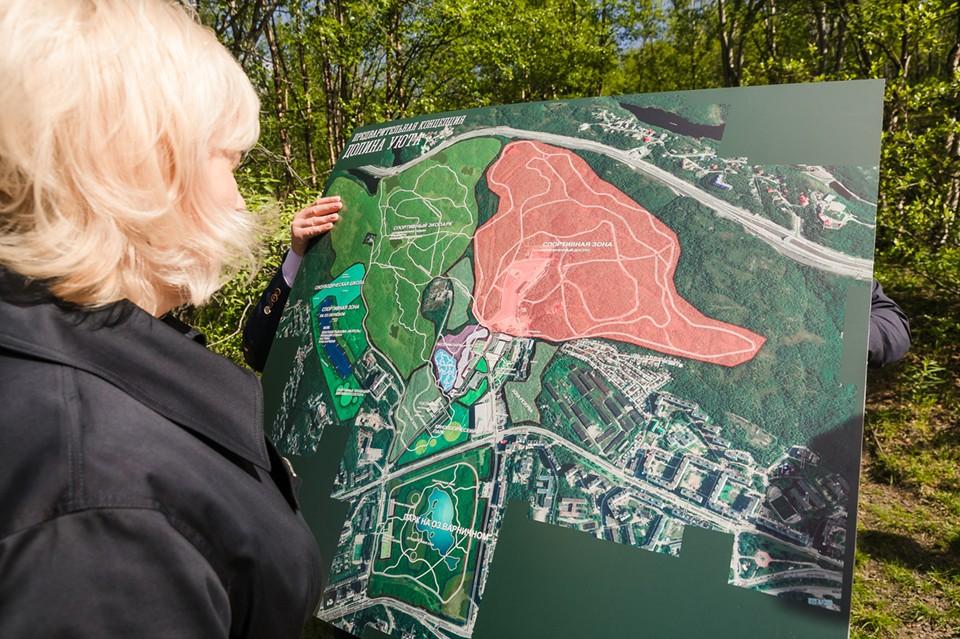 Сначала придумывались идея парка, потом эта идея обсуждалась с жителями города. Фото: Правительство МО