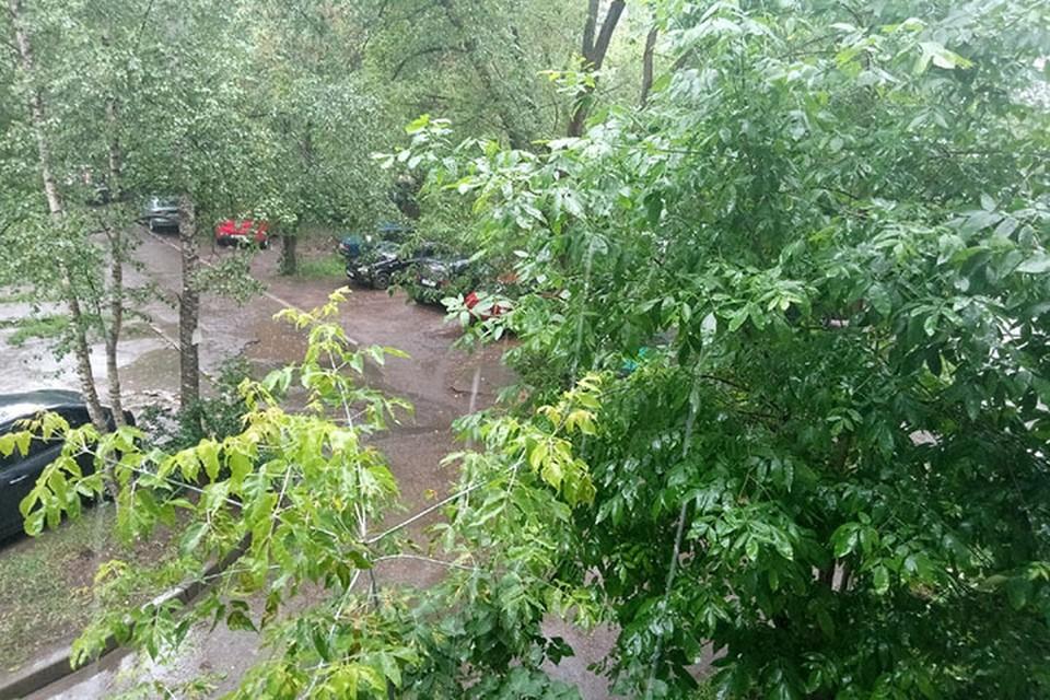 Ухудшение погоды прогнозируют в Тверской области