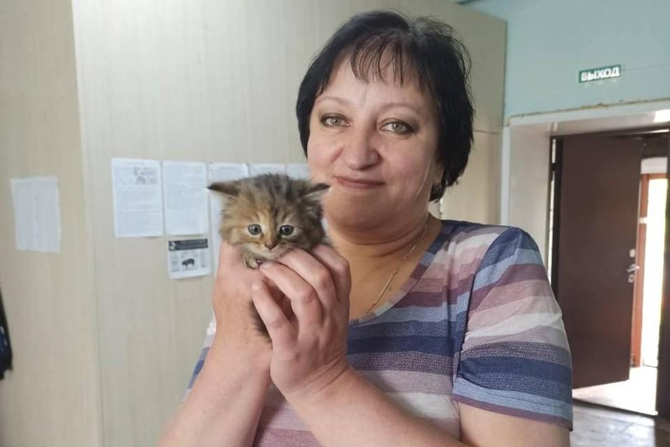 В Забайкалье в ветлечебнице на работу взяли котенка Ваську. Фото: Государственная ветеринарная служба Забайкальского края