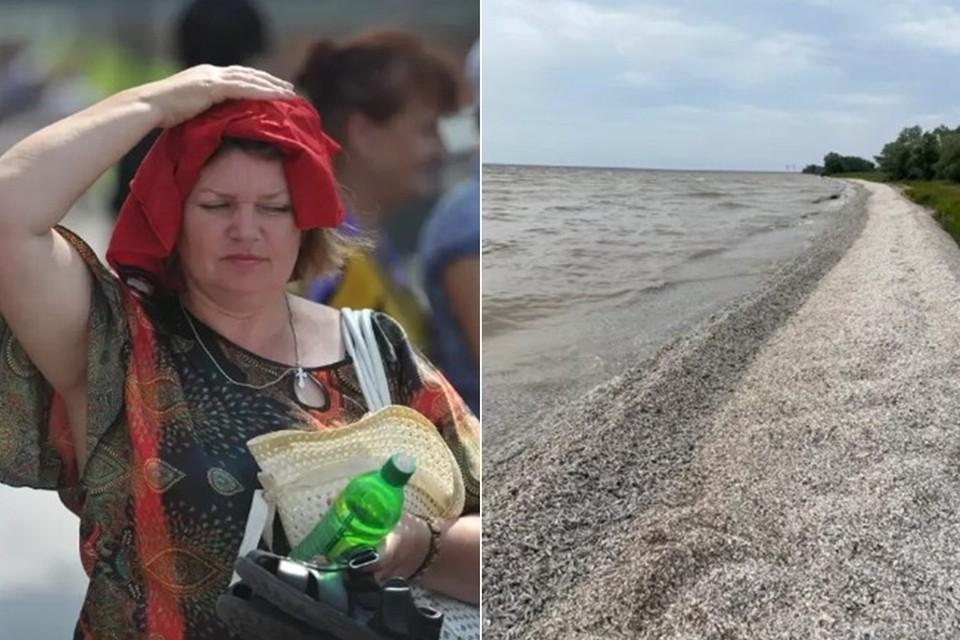 19 июля в Ростове был побит температурный рекорд. Фото: Евгения Гусева, соцсети.