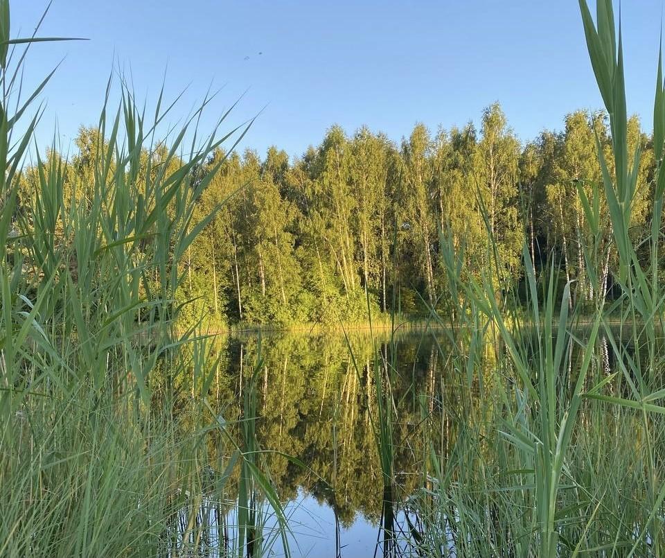В Смоленской области снова объявлен повышенный уровень погодной опасности.
