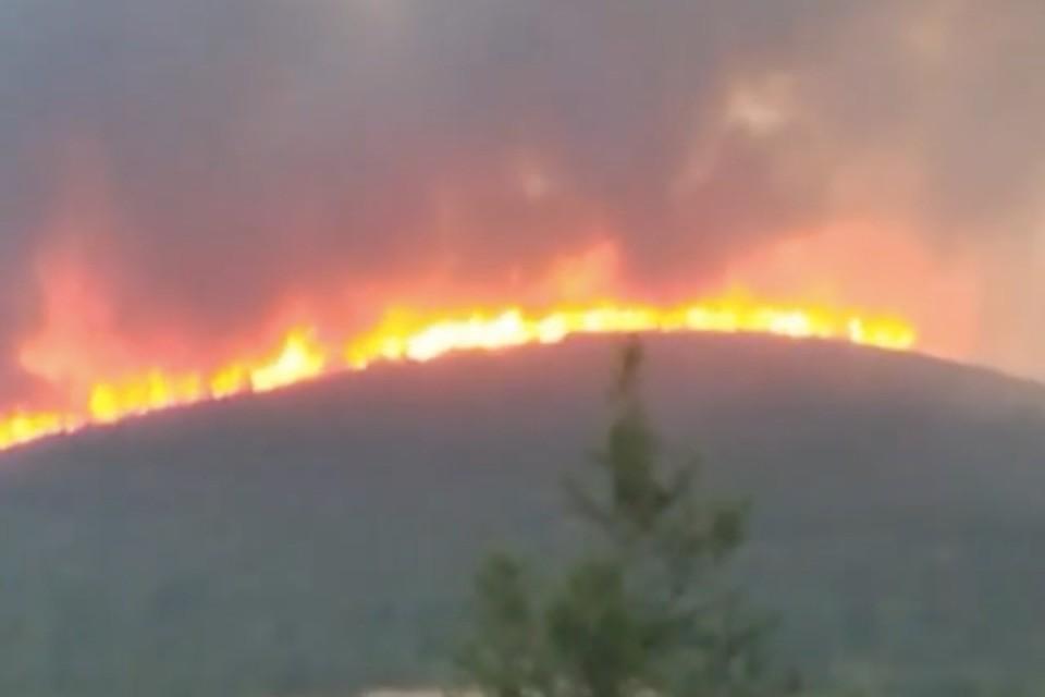 На опубликованных кадрах стена огня полностью охватила сопку на перевале Нартовый. Скриншот: vesma.today