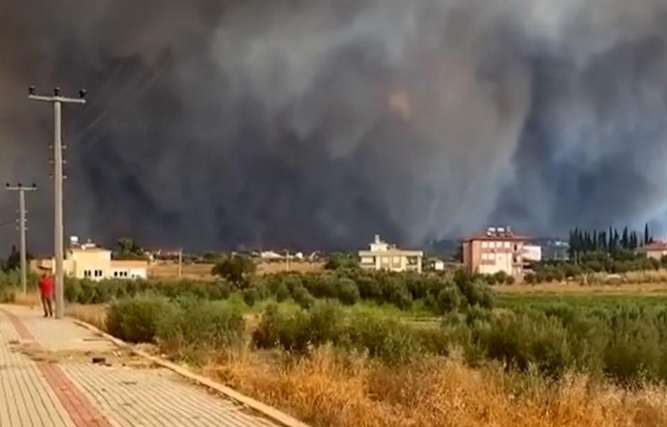 Видео лесных пожаров в Анталье появилось в сети. Фото: кадр из видео