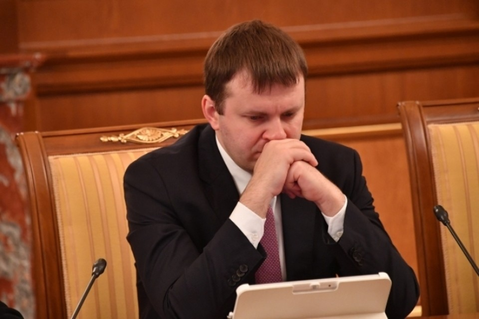 Помощник президента России Максим Орешкин