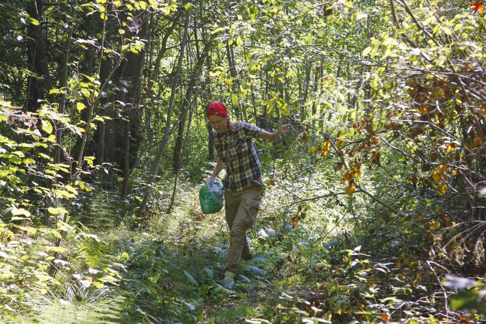 Теперь жители Удмуртии снова смогут совершать прогулки в лесах