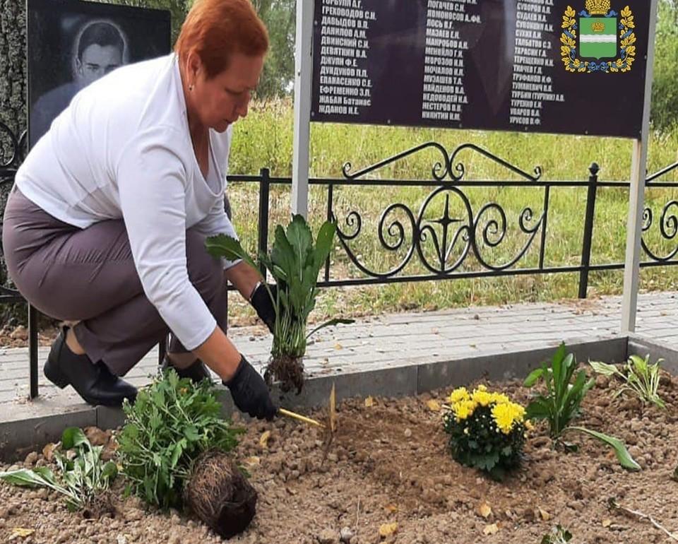 Внучка сажает на могиле своего деда саженцы.
