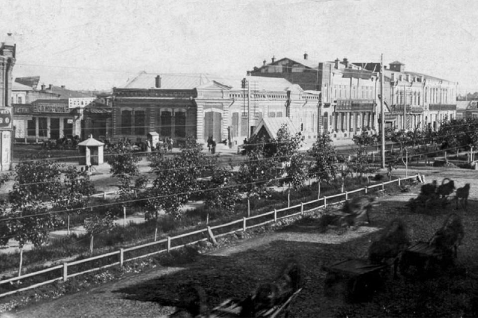 Деревья высаживали на всех улицах, на широких, вроде нынешнего Красного проспекта - в два ряда. Фото: http://bsk.nios.ru/