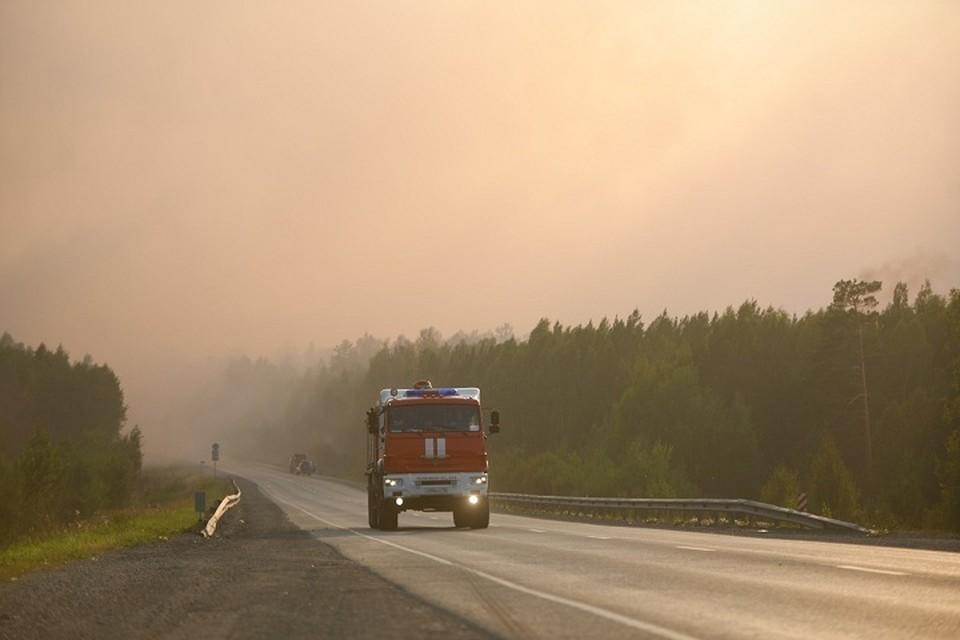 Ограничения доступа жителей Свердловской области в леса действует в 29 муниципальных образованиях