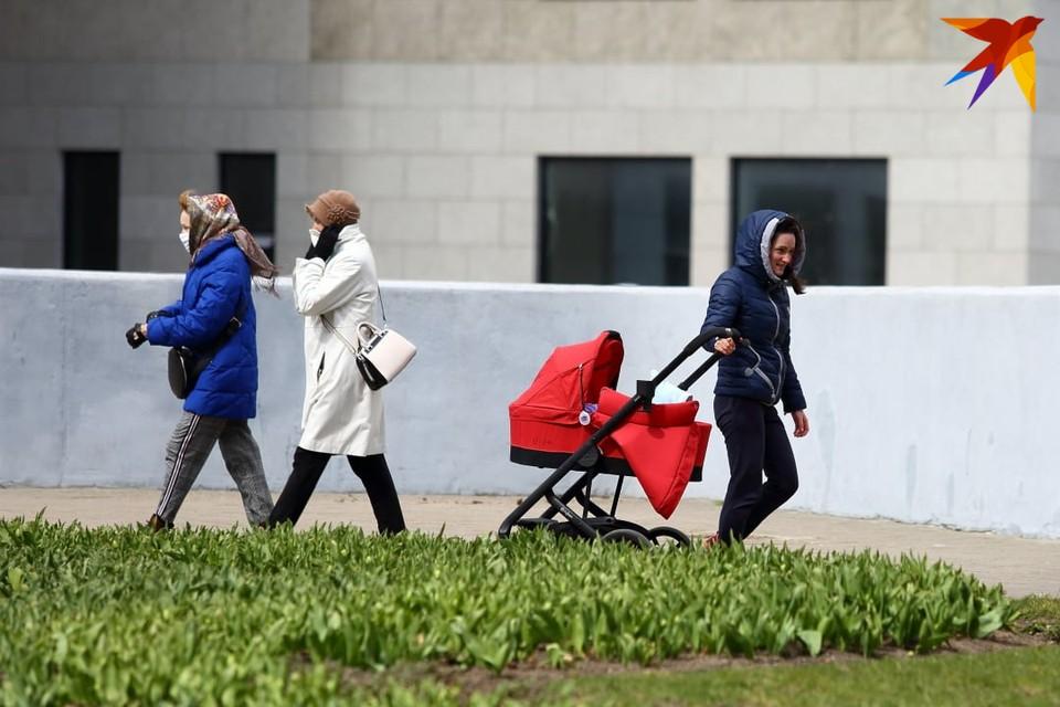Первые ночные заморозки ожидаются в Беларуси 5 и 6 сентября.