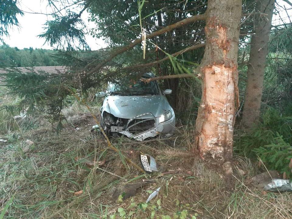 Машина врезалась в дерево, водитель погиб. Фото: ГИБДД по Тверской области
