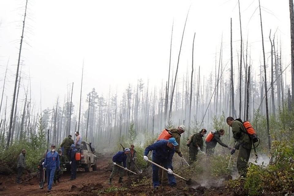 Крупный лесной пожар потушили в Катангском районе