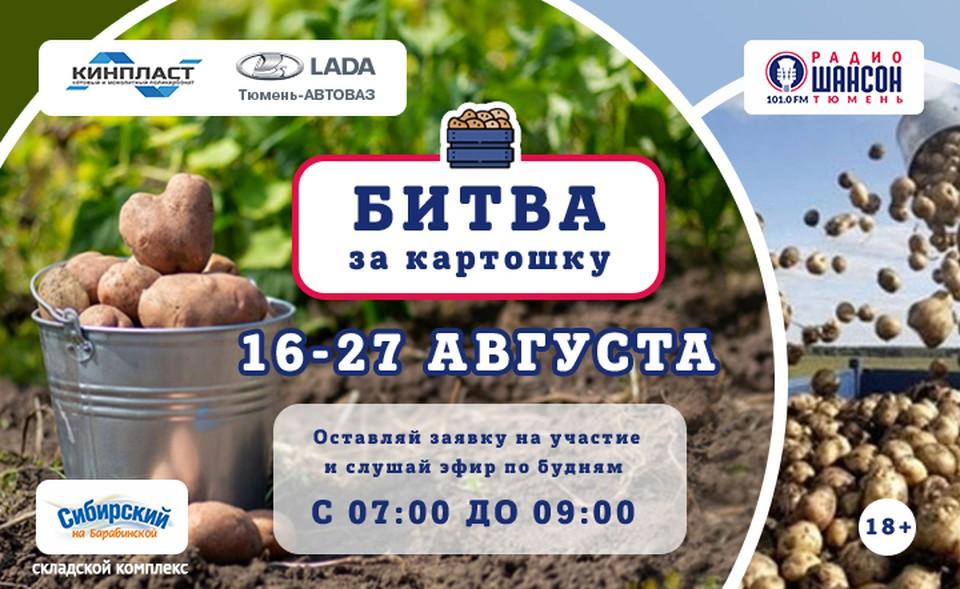 В Тюмени прошла «Битва за картошку». Фото - Радио Шансон Тюмень.