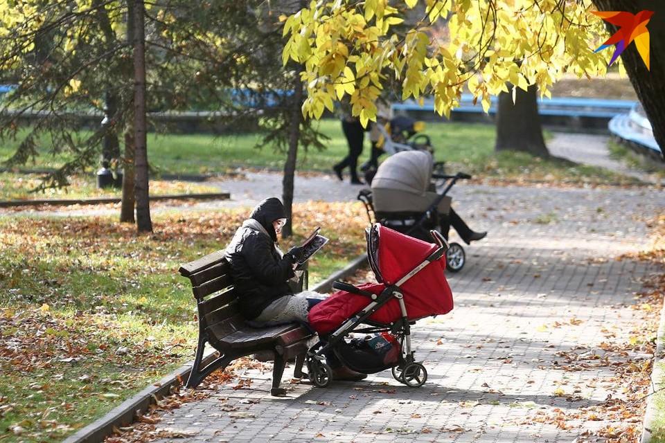 В ночь на 7 сентября в Беларуси ожидаются заморозки