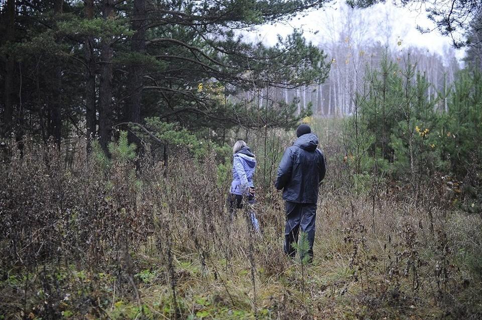 Люди шли в лес без телефона и терялись.