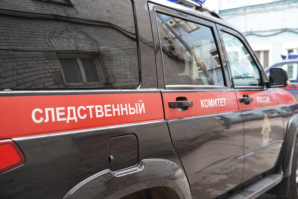 Следователи проводят проверку по факту похищения детей в Тольятти