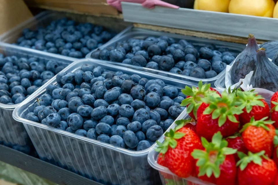 В Ленобласти сдали в заготовительные пункты более 34 тонн ягод за неполный 2021 год.
