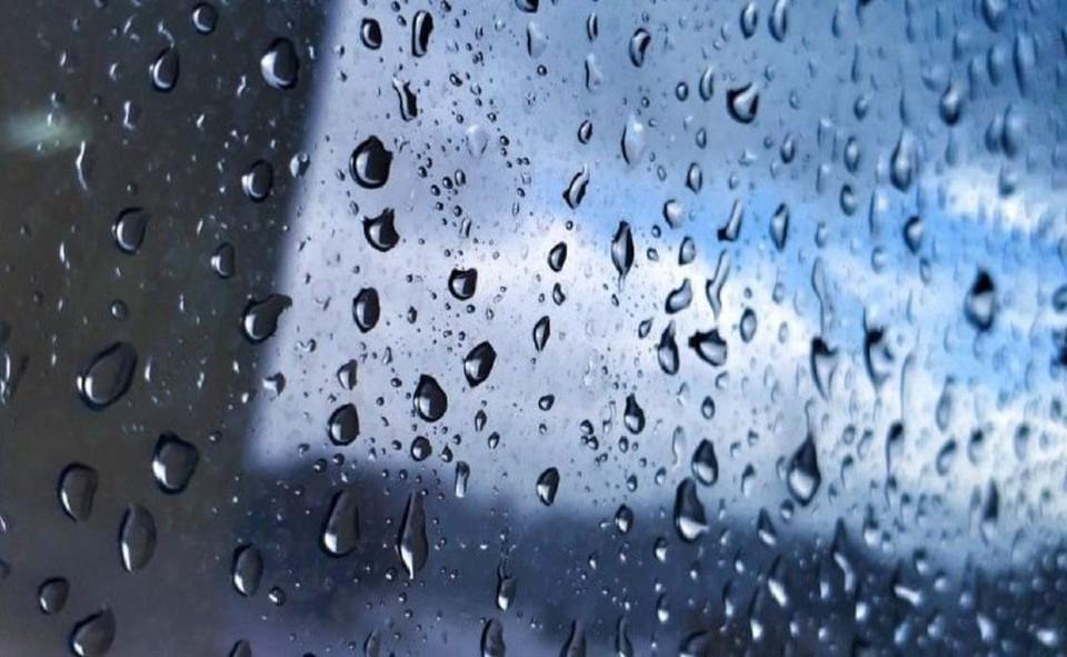 В некоторых районах края пройдут дожди