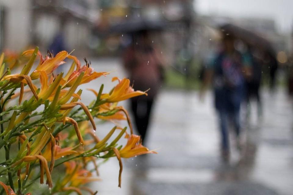 МЧС: сильные дожди и заморозки придут в Иркутскую область в ближайшие дни