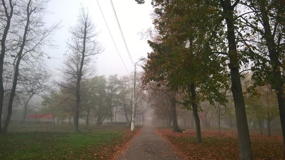 Утром и вечером возможен туман. Фото: Артем Гребеник.