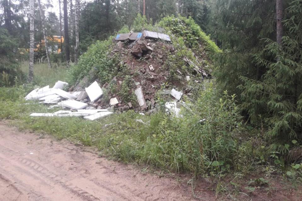 На берегу Орши убрали свалку строительных отдохов Фото: Минприроды Тверской области