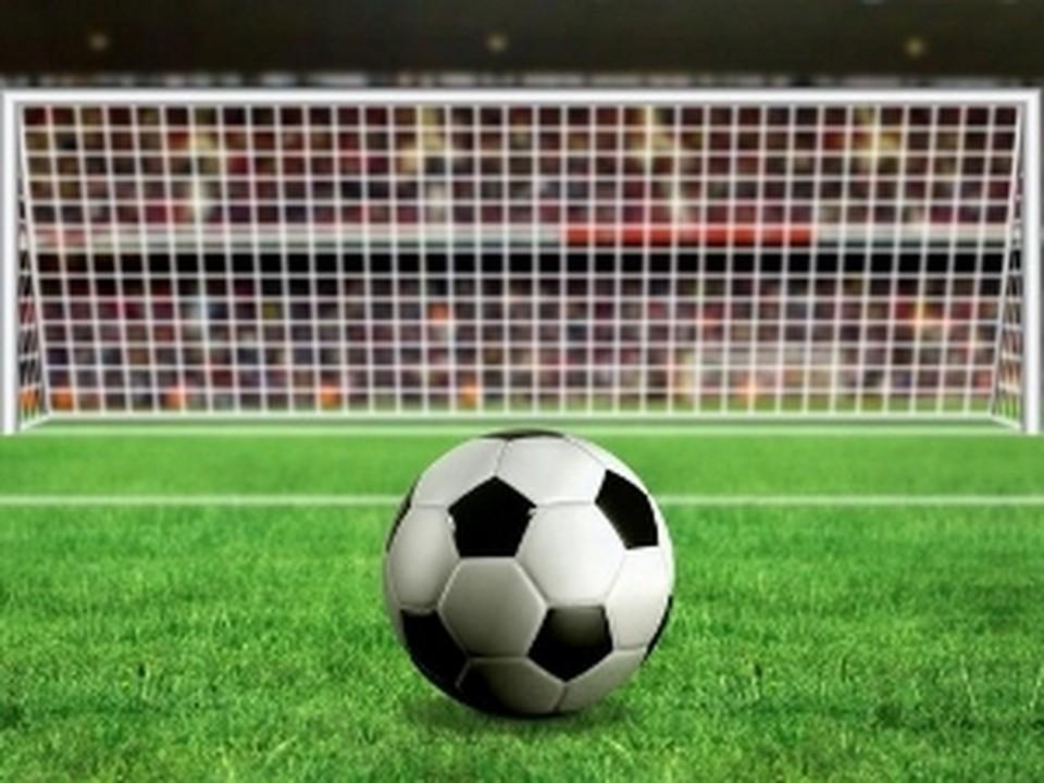 Весной в Самару приедет комиссия из чиновников ФИФА