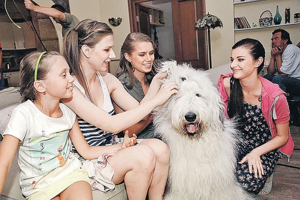 В новом сезоне у Пуговки сбылась мечта - ей подарили собаку породы бобтейл по кличке Граф, который тут же стал всеобщим любимцем.