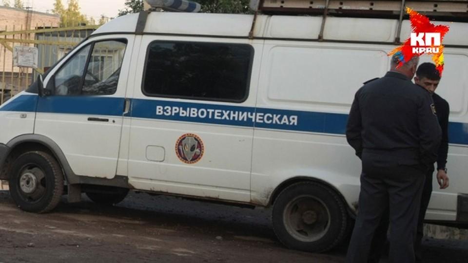 В Татарстане обезвредили несколько самодельных бомб.