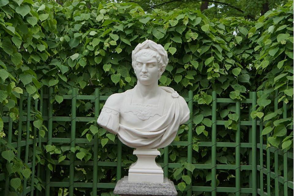 """Летний сад. Бюст """"Нерон"""". Скульптор Н. Кабианка. Италия."""