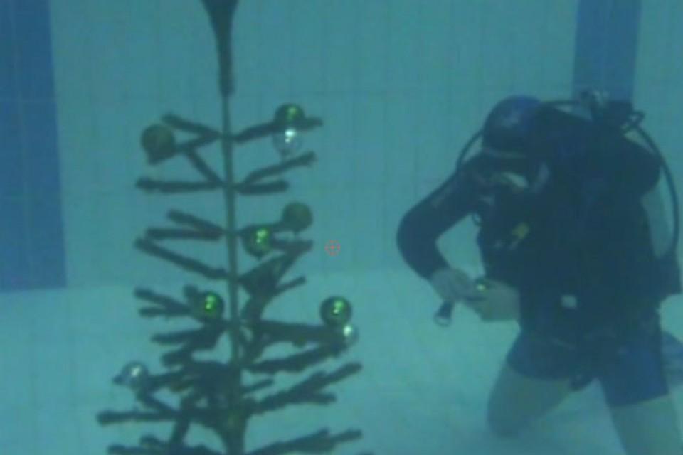 На подводной елке игрушки всплывают вверх