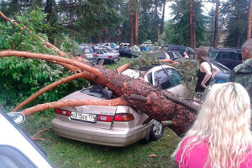 Несмотря на опасность, люди сообща оттаскивали упавшие деревья
