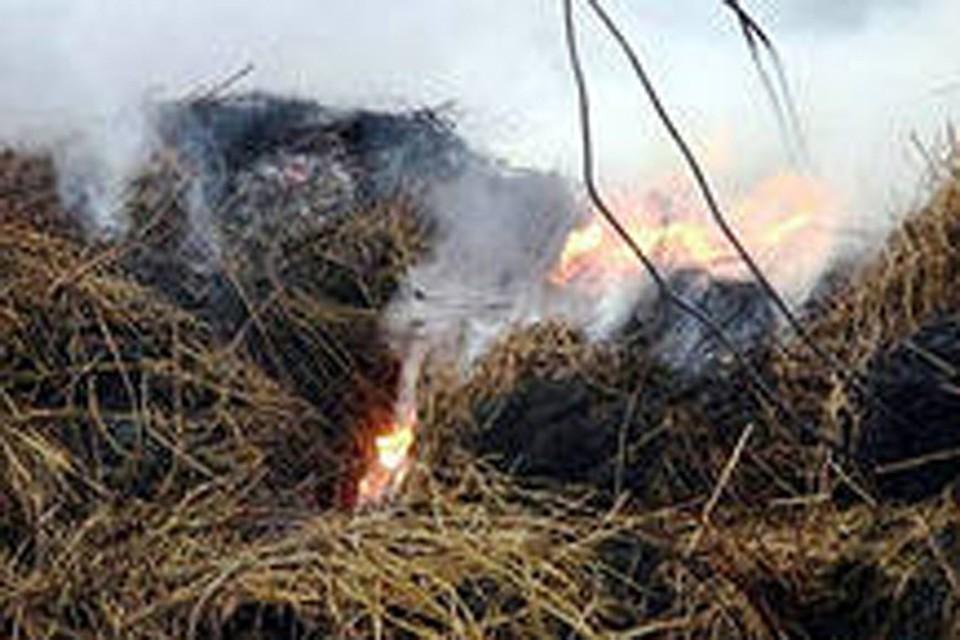 Лесные пожары из Забайкальского края добрались до Бурятии