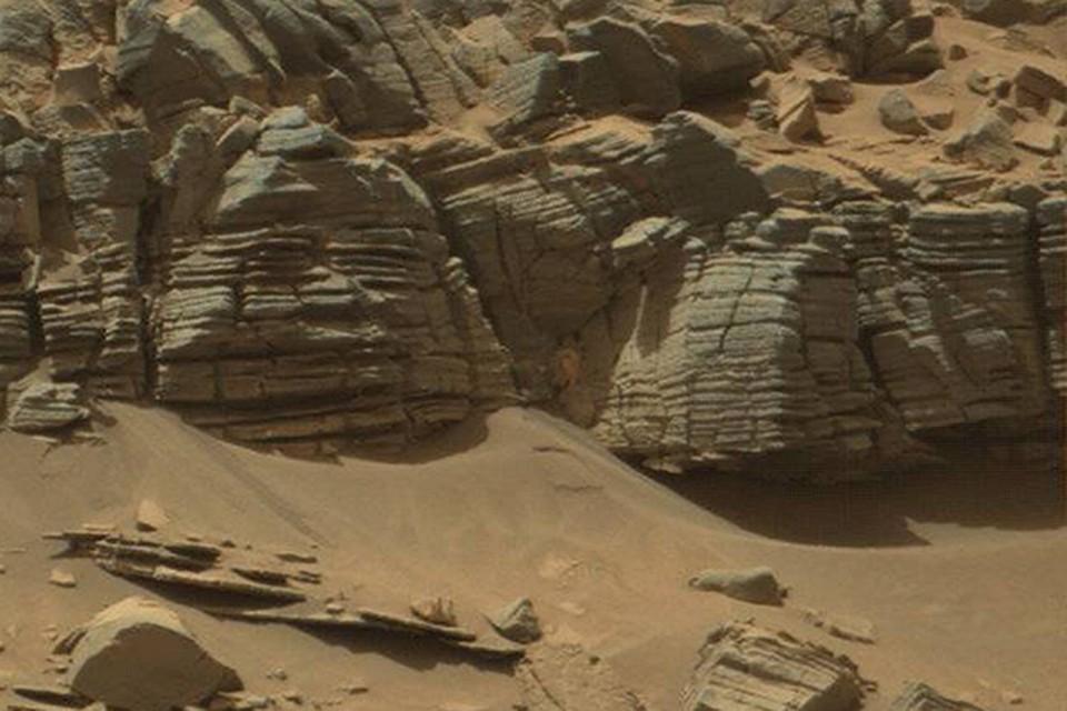живёт краб на марсе фото зоной сосредоточения