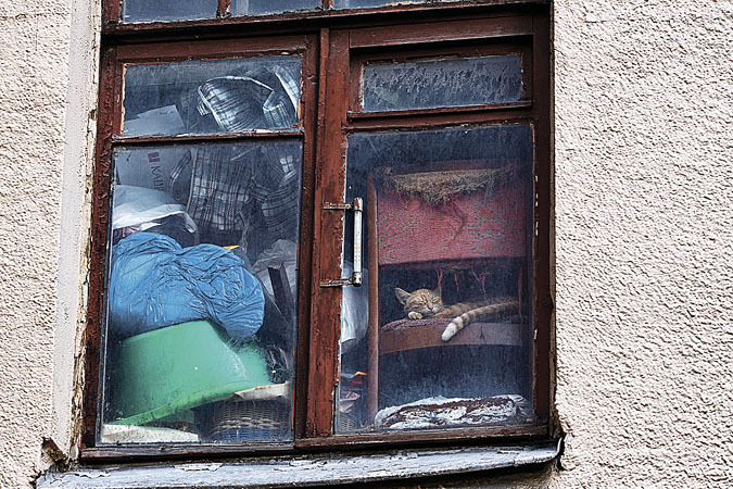 Тут, видимо, живут гуру вертикального хранения... Фото: фотобанк Лори.