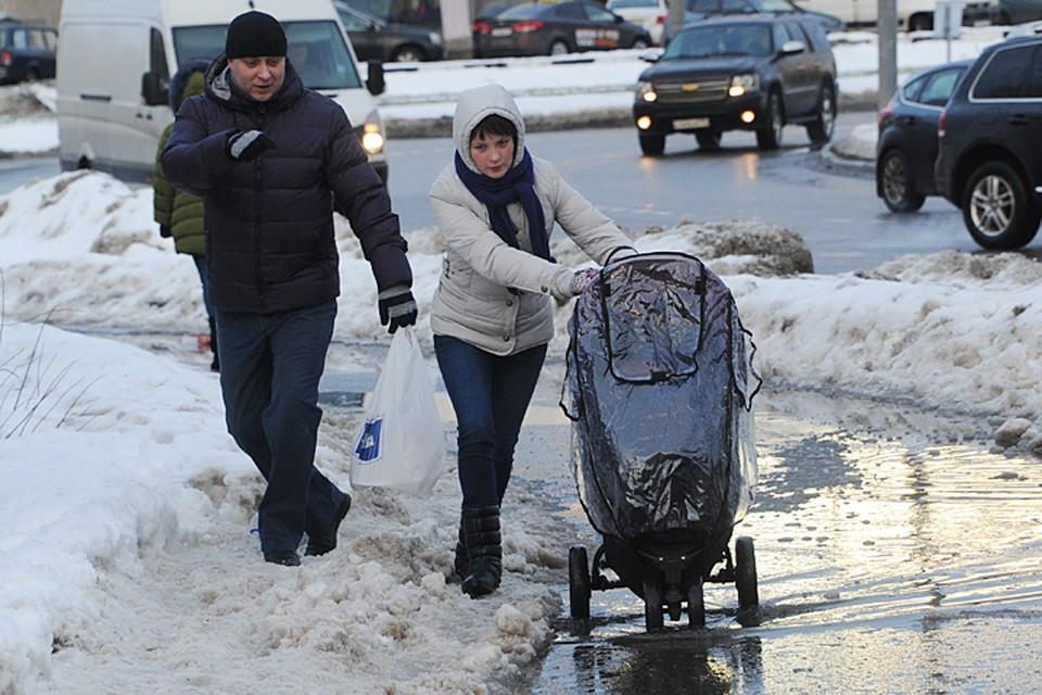 Январь-2016 в Москве завершился рекордной оттепелью и проливными дождями