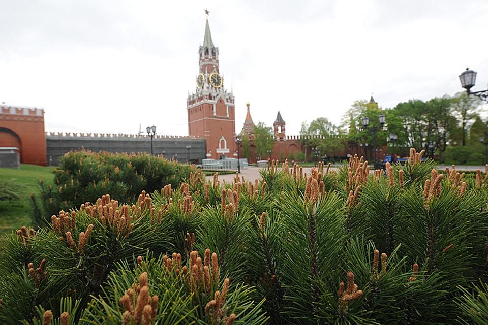квартир, парк на месте 14 корпуса кремля кожи