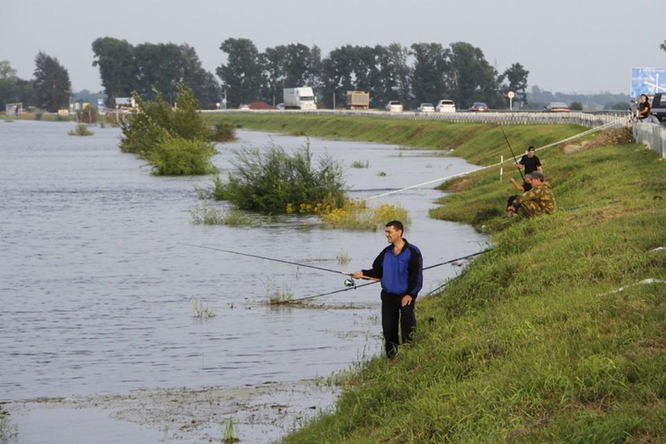 """На территории Приамурья есть три десятка специальных участков, где организовано любительское и спортивное рыболовство. Фото: """"КП""""."""