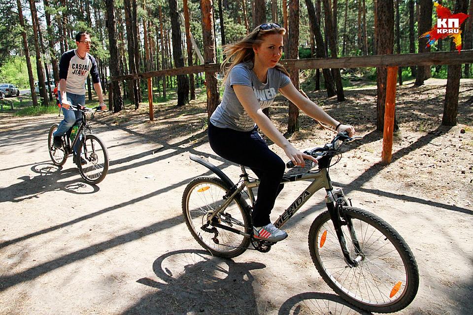 Прокат велосипедов в Москве  Статья  Отдых с детьми  OSDRU